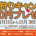 紅葉狩りキャンペーン(11月)のご案内!